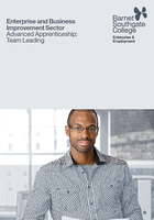 Advanced Apprenticeships: Team Leadership