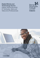Higher Apprenticeship: IT, Software, Web and Telecoms Professionals